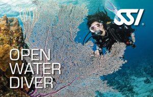 ronilac otvorenih voda
